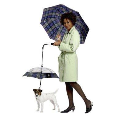 Жительницы Берлина Алиса и Юлия представили публике зонт, который поет...