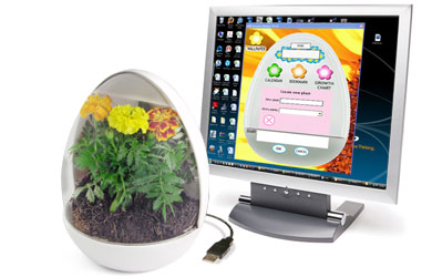 usb-greenhouse-pictures